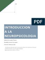 Introduccion de La Neuropsicologia
