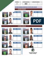 RESULTADOS PROVISORIOS.pdf