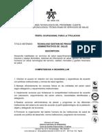 Perfil dythtujftjut.o Gestion de Pyjdtujrocesos Administrativos de Salud