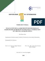 TDUEX_2013_Enciso_Sanz.pdf