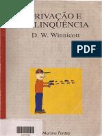 WINNICOTT - Agressão e Suas Raizes