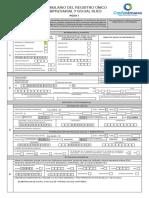 01Formulario_rues_hoja_1_pn_pj.pdf