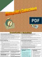 10. Prescripcion y Caducidad