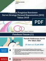 Panduan Survei SFO 2018