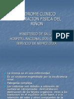 EXPLORACION FISICA DEL RIÑON.ppt