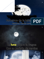 Romance Luna Luna