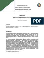 informe procesa 1