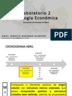 Lab 2 - DESCRIPCION MINERALES MENA II.pdf