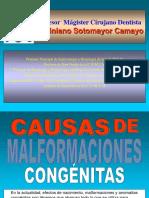 Causas de Malformaciones Congénitas Con Efectos