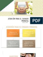 Atención Para El Cuidado Prenatal