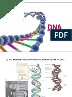 1 - DNA.pdf