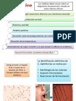 Difteria Dx TX Pvc CC