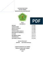 LAPORAN PRAKTIKUM BOTANI FARMASI (ANATOMI DAN MORFOLGI AKAR).docx