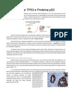 Gente TP53 e Proteína p53.docx
