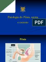 1 - Patologia do Pênis,Uretra e Escroto.ppt