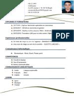 CV de Candidature