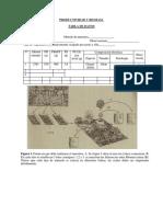Productividad y Biomasa