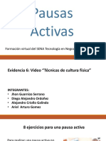Video Pautas Activas