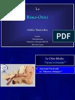 varricchio2.pdf