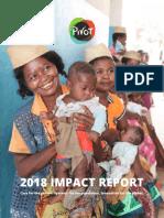 PIVOT 2018 Impact Report
