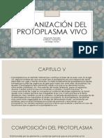 Presentación CIENCIAS .pptx