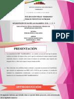 Burga Nuevo Diapositivass Exponer Proyecto
