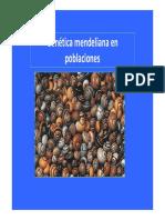 Gen Tica Mendeliana en Poblaciones