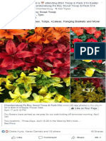 FYI post flowers