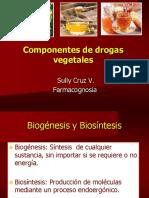 4.Carbohidratos (1)
