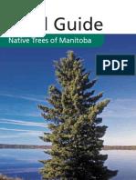Trees of Manitoba.pdf