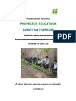MODULO DE HUERTO ESCOLAR CARLOS 2 (Autoguardado).docx