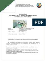 guiaTratamiento-de-soluciones-hidroII-1-2019 (2).docx