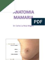 Original Malformacion Mamaria 16 Mayo. 2018. Dr La Rosa. Unfv.