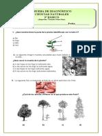 3bsicodiagnoscsnat-160303011313.pdf
