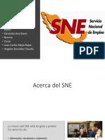 Acerca-del-SNE.pptx