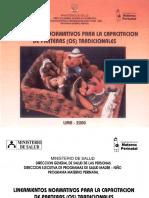 cpacitacion parteras.pdf