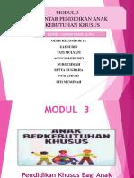 Pendidikan ABK Modul 3
