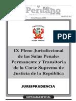 Ix Pleno Jurisdiccional Penal