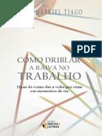Como Driblar a Raiva No Trabalho - Luiz Gabriel Tiago