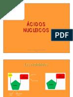 8-acidos-nucleicos.pdf