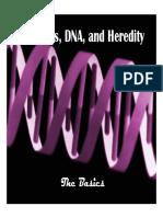 basicspresentation (1).pdf