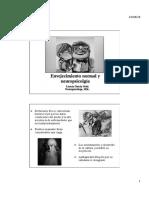 Sesión 1 Envejecimiento normal - Evaluación NPS en el adulto mayor