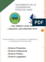 Plan Estrategico Cooperativa Frutos Del Ande - IDESI-consts