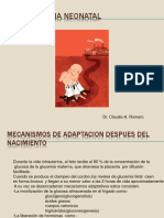 Hipoglucemia _neonatal 2019