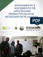 ACOMPAÑAMIENTO.pdf