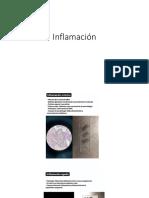 Inflamación (1)