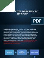 ETAPAS-DEL-DESARROLLO-HUMANO (1)