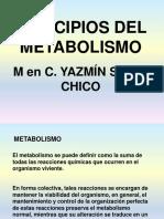 8. Principios Del Metabolismo