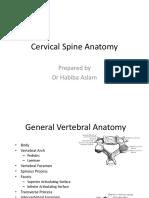 Anatomy of cervical spine.ppt