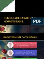Pembuluh Darah Dan Homeostasis